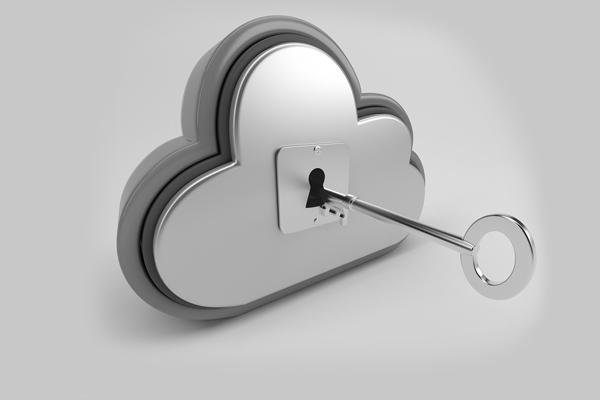 Vincovi Cloud Security Services